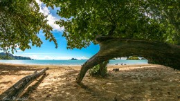 Noppharattara Beach, Krabi Thailand