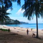 Ausflug nach Phuket