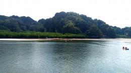 Blick auf die Felsen Insel und Mangroven in der Mitte der Flussmündung an der Talane Bay