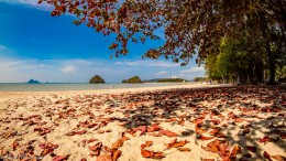 Herbststimmung in Thailand